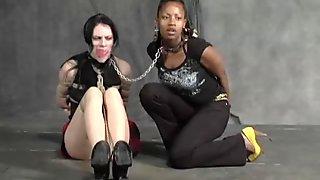 Master punish white and black lesbians on a leash